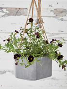 Outdoor Concrete Hanging Planter