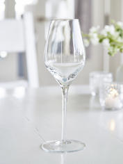 Elegant Etched White Wine Glass
